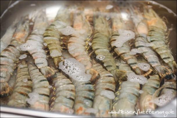 Bubu Gump Shrimps (002 von 010)