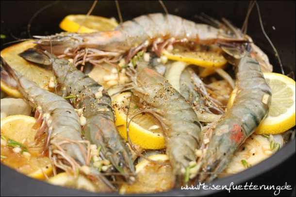Bubu Gump Shrimps (007 von 010)