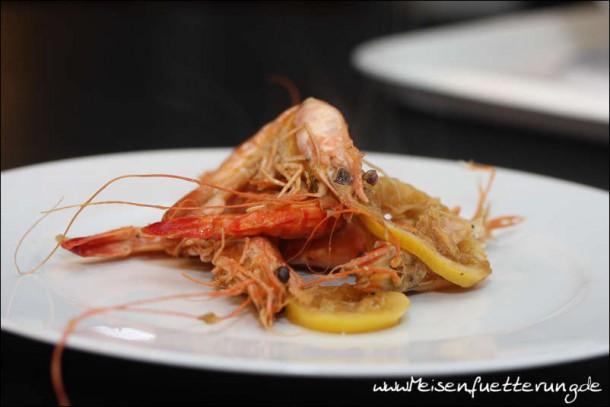 Bubu Gump Shrimps (010 von 010)