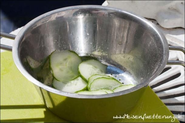 Cucumber Sandwich (1 von 5)