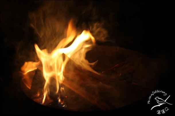 Feuer und Flamme (054 von 090)