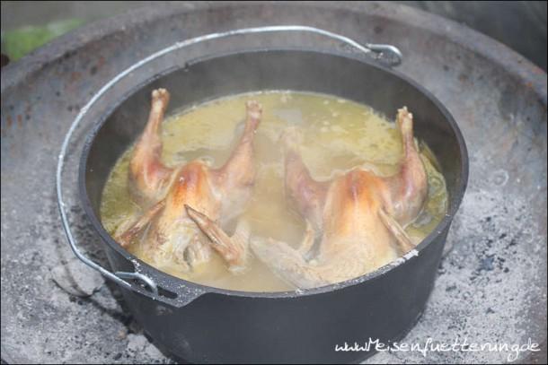 Hühnersuppe (003 von 012)