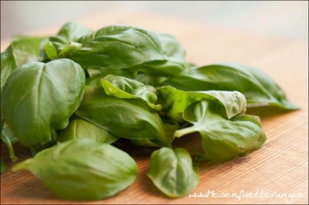 Pesto (1 von 4)
