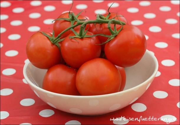 Tomaten (1 von 10)
