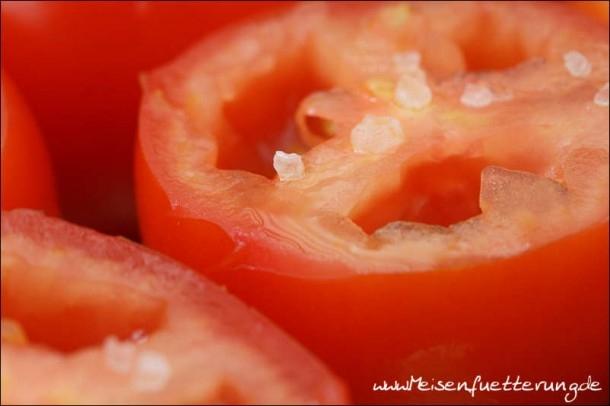 Tomaten (6 von 10)