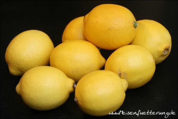 eingelegte Zitronen (002 von 002)