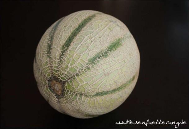 melone (1 von 14)