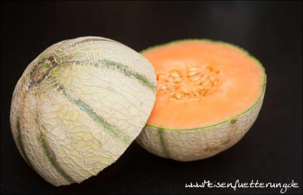 melone (2 von 14)