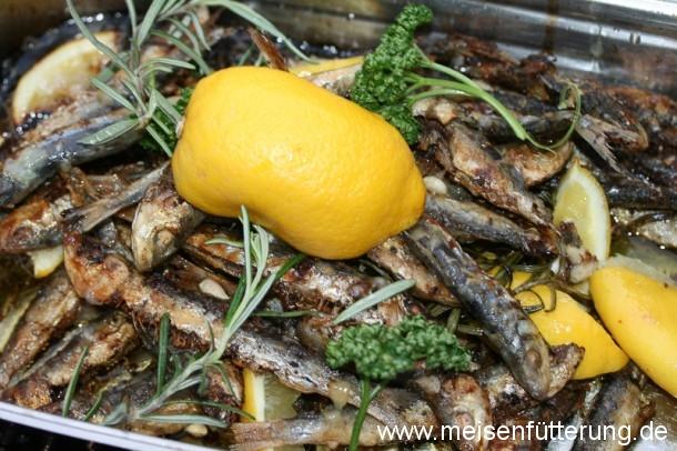 sardinen-24